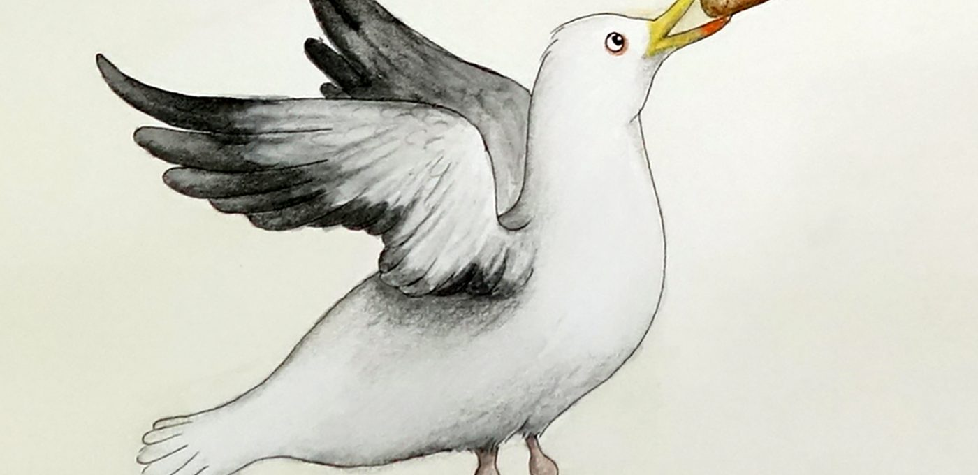 Der Flaschengeist (Detail Möwe) - Illustration von Isabel Dehmel