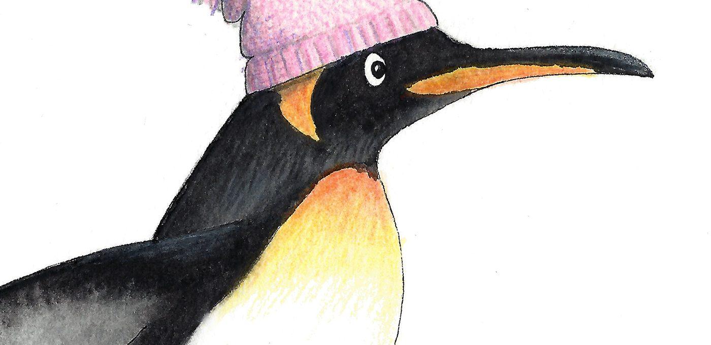 Der Schlittschuh fahrende Pinguin (Detail) - Illustration von Isabel Dehmel