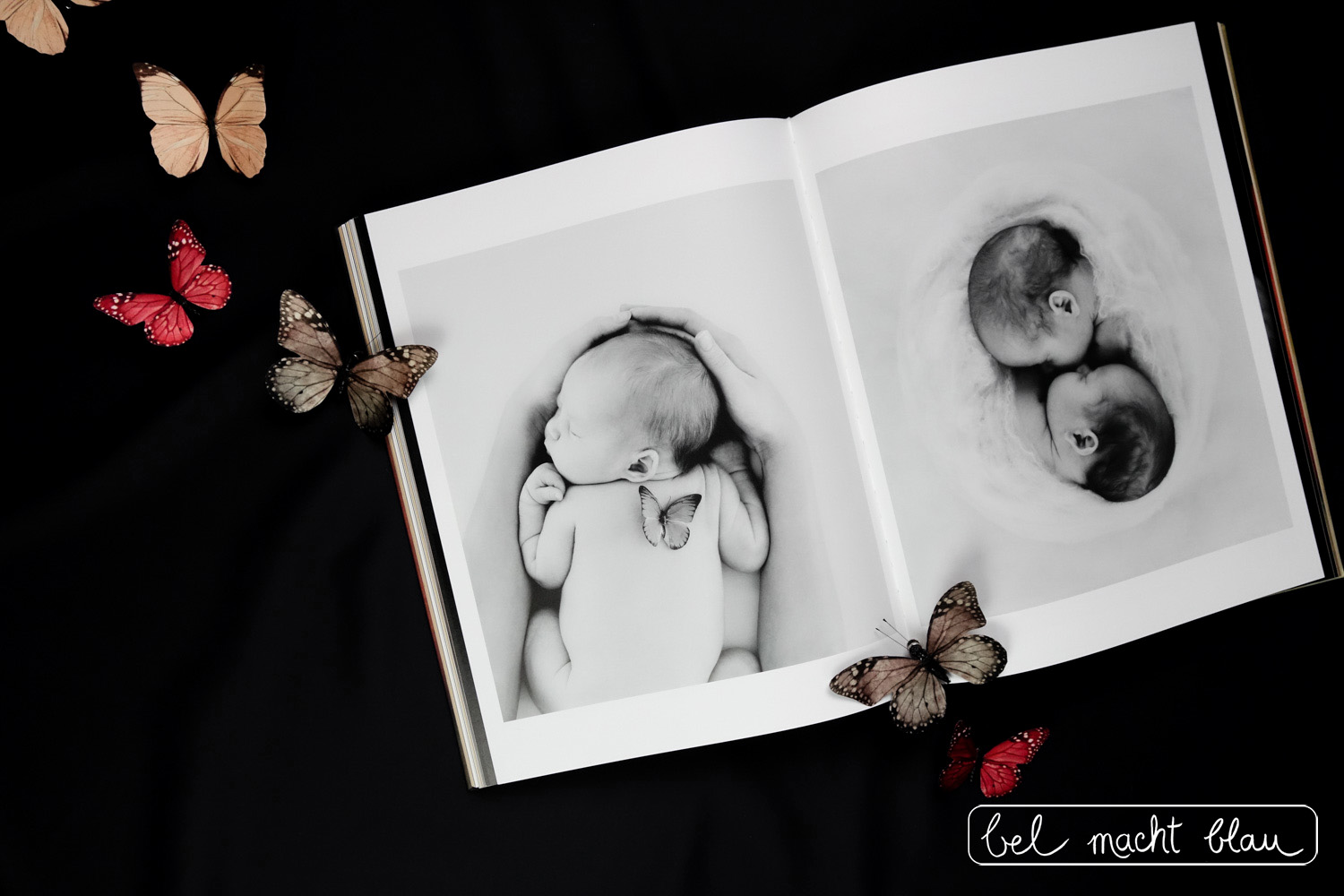 Anne Geddes Small World // Buchtipp zum Muttertag // Babyfotografie // Schmetterlinge