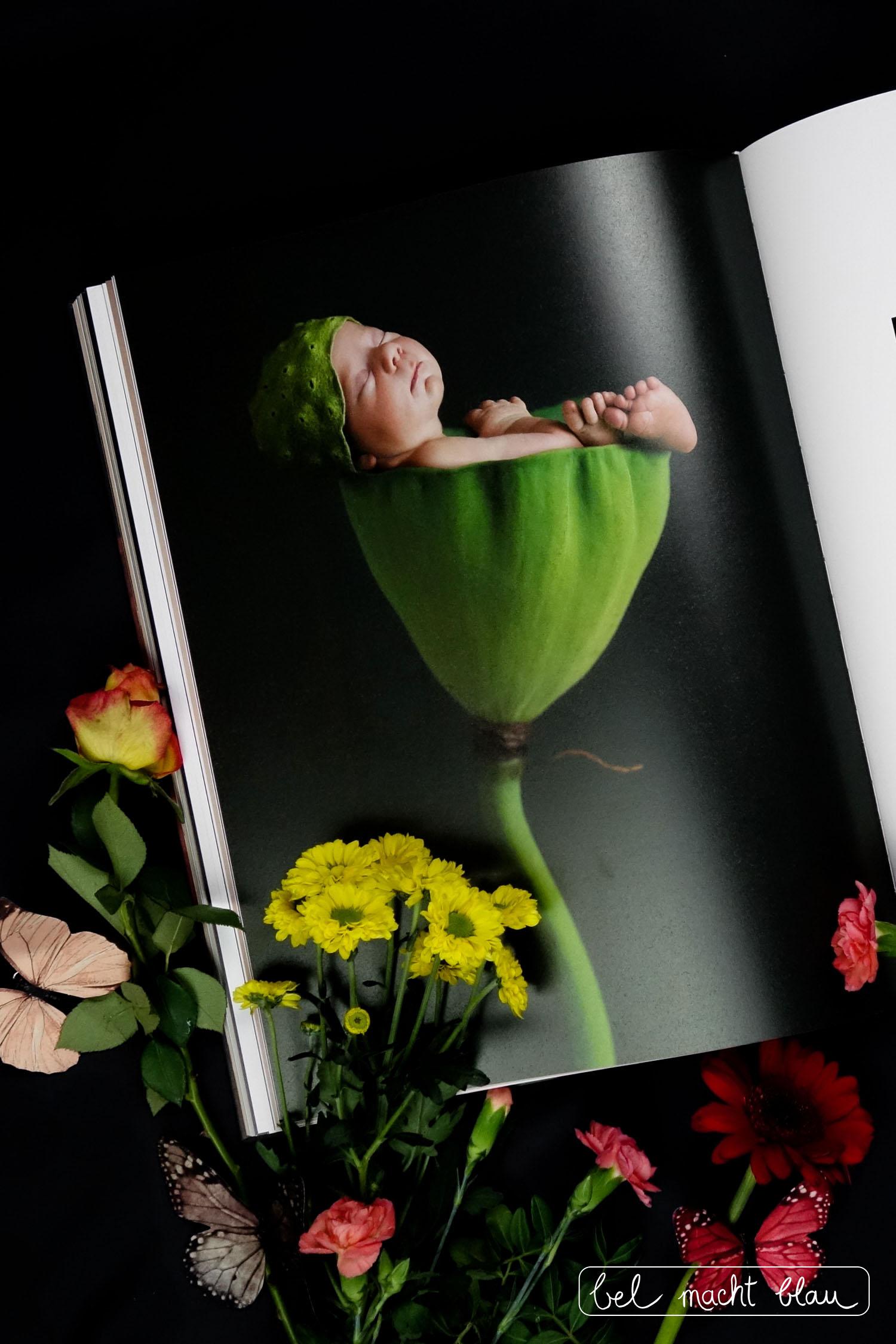 Annes Geddes Small World // Buchtipp zum Muttertag // Babyfotografie // Blumen