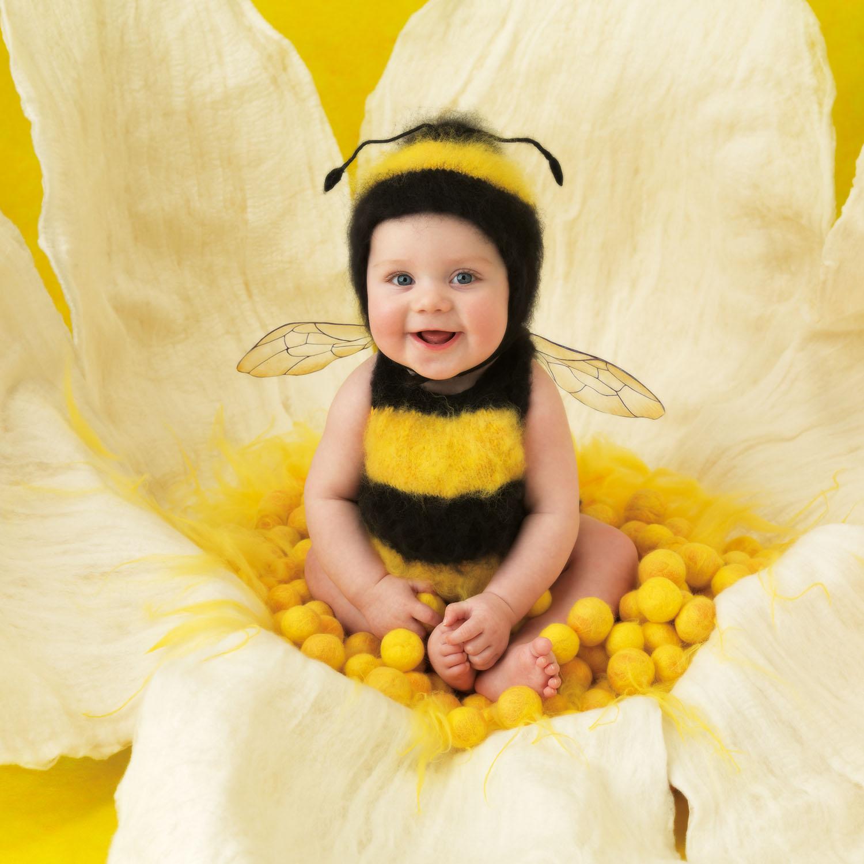 Anne Geddes Small World - Biene - Babyfotografie - Jai, 6 months, Sydney, 2012 (p.5)